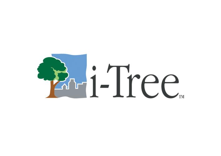 TreeManagement_i-TRee